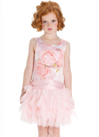 Biscotti a Rose is a Rose Dropwaist Tutu Dress sz 6 only