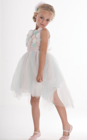 Biscotti Origami Garden Tulle Ballerina Dress for Girls sz 5 only