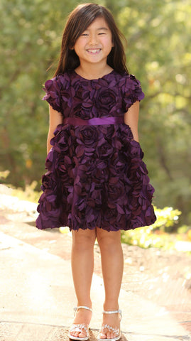 Halabaloo Eggplant Purple Roses Bouquet Dress sz 4 only