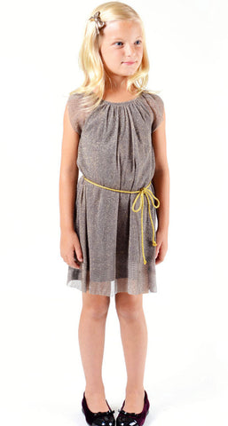 Imoga Halley Dress in Glimmery Slate sz 6 only