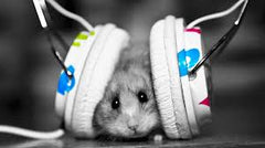 Mouse-Headphones-Audicus-sound-vaccine