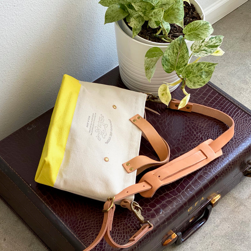 Analogue Bag || Palo Verde