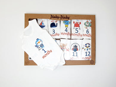 Baby Milestone Set ( 12 pieces )_ sleeveless