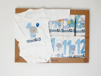 Baby Milestone Set ( 12 pieces )