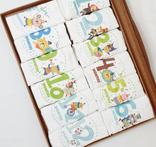 Load image into Gallery viewer, Baby Milestone Set ( 12 pieces )