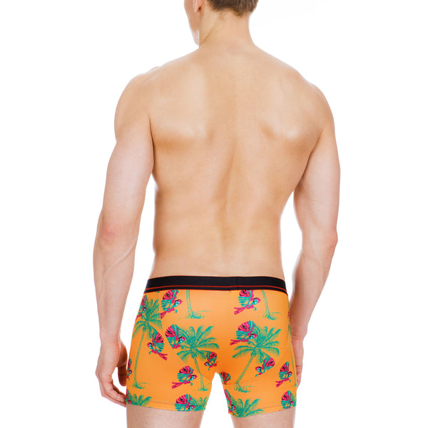Men's Underwear, Birdie Boxer-brief, Stylish underwear, Cool design underwear, Ken Wroy  - 3