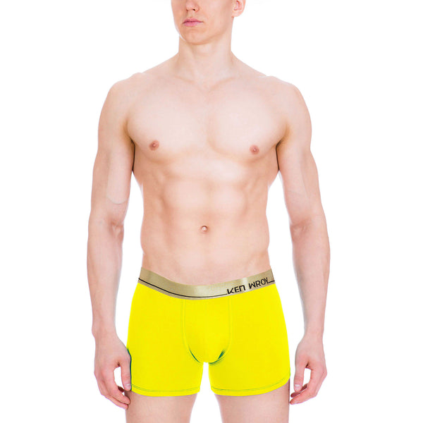 Men's Underwear, Yellow Submarine Boxer-brief, Ken Wroy