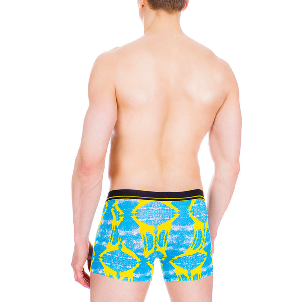 Men's Underwear, Jungle Giraffe Boxer-brief, girafe undies, Ken Wroy  - 3