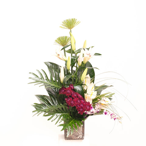 Zished Arrangement of the Day