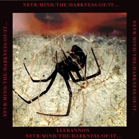 "Lee Bannon: ""never/mind/the/darkness/of/it"" (Vinyl LP)"