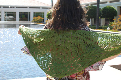 Picture of Wild Lettuce One Skein Shawl -- Instant Download
