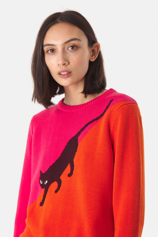 Alley Cat Jumper