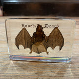 Loved To Death Bat Specimen in Lucite