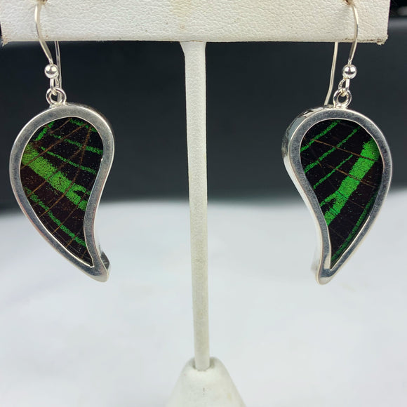 Green & Black Sunset Moth Wing Sterling Earrings
