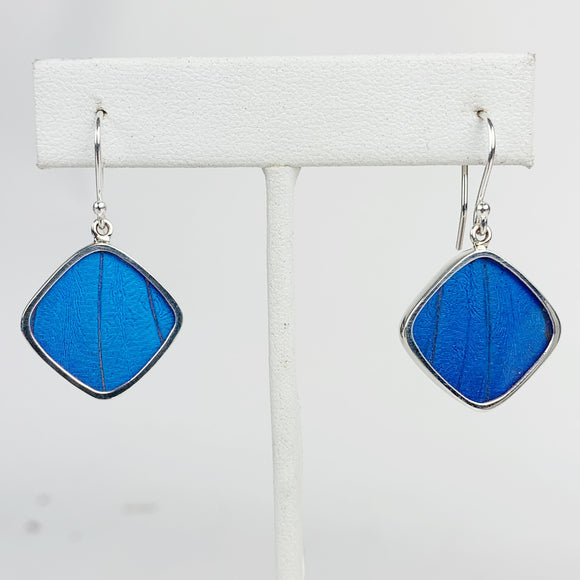 Blue Morpho Wing Diamond Shape Sterling Earrings
