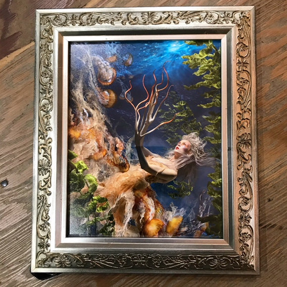 { A Curious Thing } Ransom & Mitchell Photo Art Print Framed 8