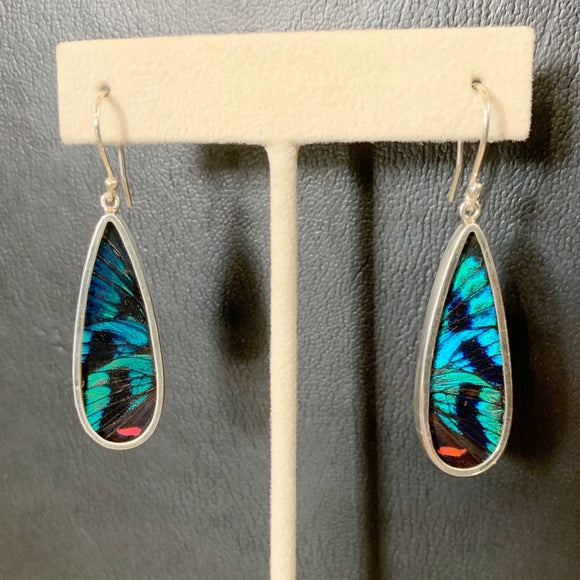 Blue Flash Butterfly Wing Drop Shape Sterling Earrings