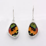 Sunset Moth Wing Sterling Earrings
