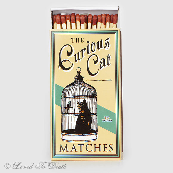 Curious Cat Matches