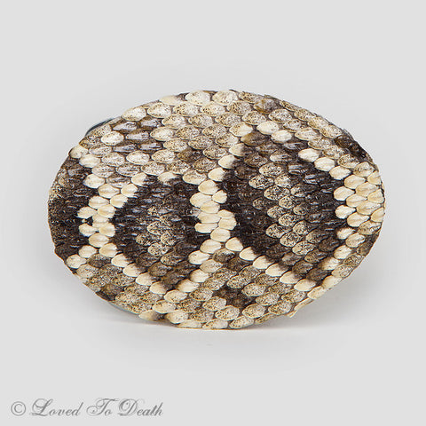 Eastern Diamondback Rattlesnake Belt Buckle