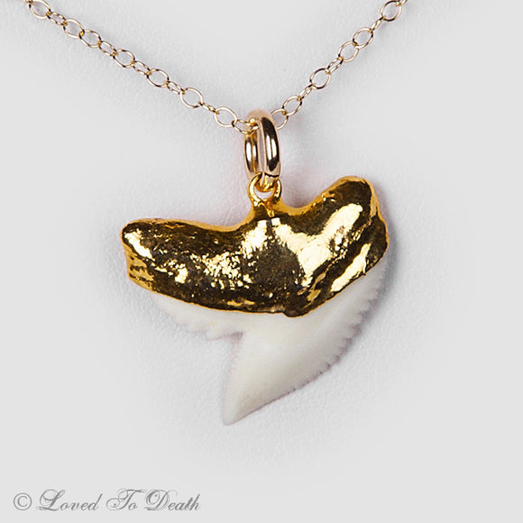 Tiger Shark Tooth 24K Dipped Necklace