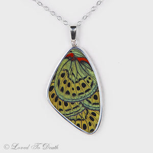Charles Darwin Butterfly Wing Double Sided Sterling Necklace