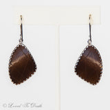 Owl Moth Wing Sterling Earrings