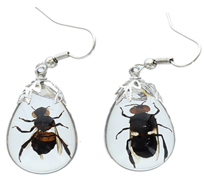 Honey Bee Lucite Earrings