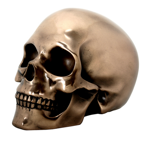 Resin Bronze Cast Human Skull Full