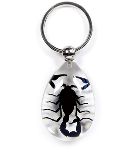Black Scorpion Lucite Teardrop Keychain