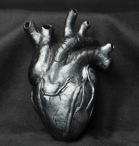 Anatomical Heart Sculpture Cast Art Shane Izykowski