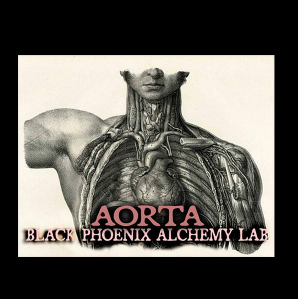 Aorta Black Phoenix Alchemy Lab Fragrance