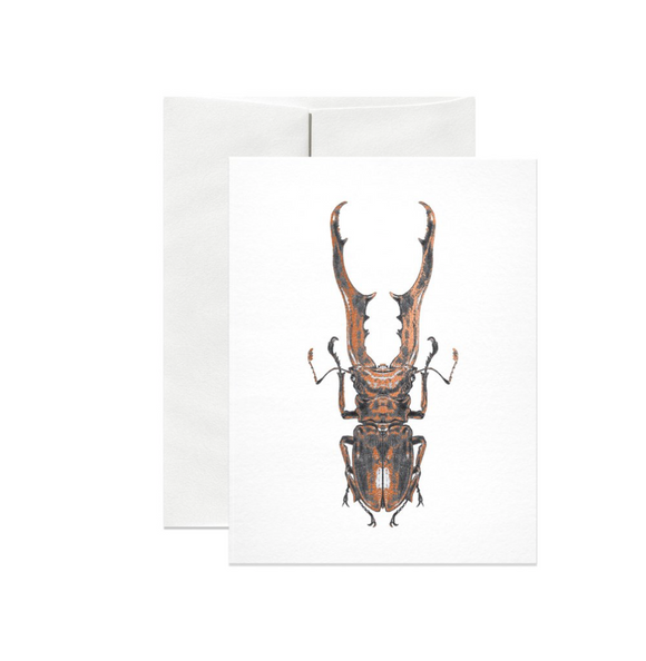Stag Beetle Copper Foil Gift Card