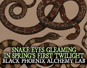 Snake Eyes Gleaming in Spring's First Twilight 2019 Black Phoenix Alchemy Lab Perfume Oil