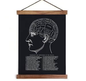 Phrenology Reproduction Canvas Print - Pull Down Chart