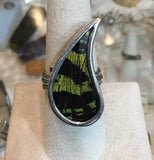 Sterling Sunset Moth Wing Ring