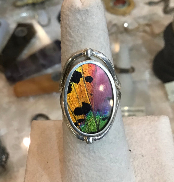 Sunset Moth Wing Reversible Sterling Ring
