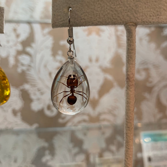Ant Lucite Earrings