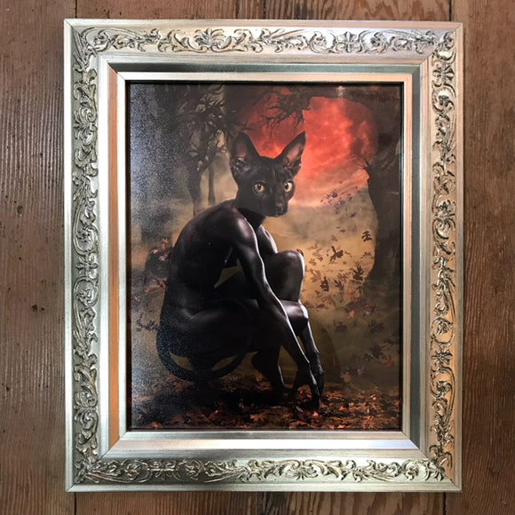 { La Chat Noir  } Ransom & Mitchell Photo Art Print Framed 8