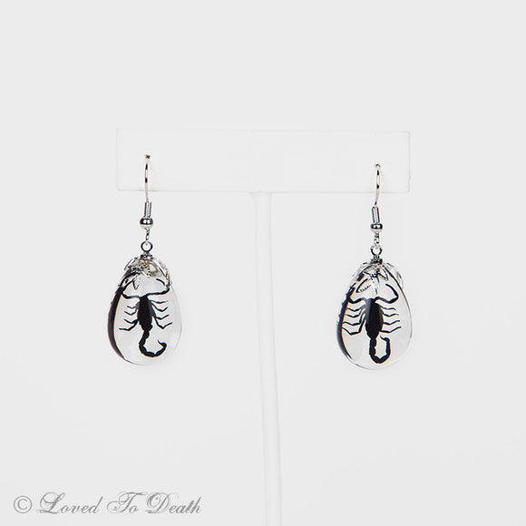 Black Scorpion Lucite Earrings