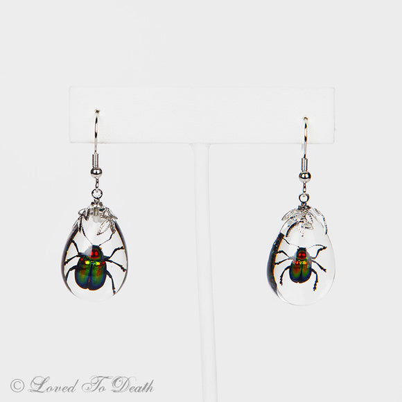 Shining Leaf Beetle Lucite Earrings