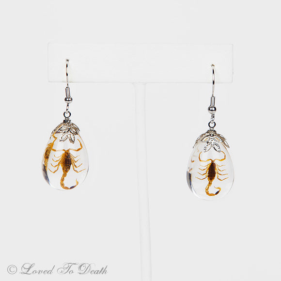 Golden Scorpion Lucite Earrings