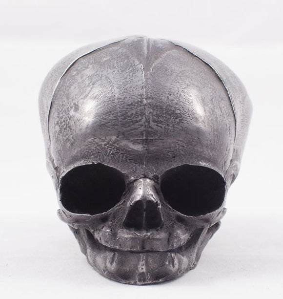 Aluminum Finish Fetal Skull Cast Art