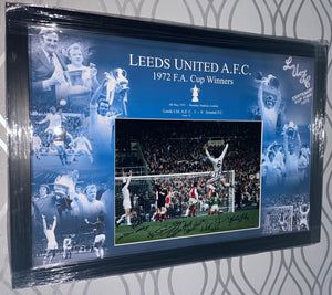 OFFICIAL 2020/21 multi signed and framed shirt