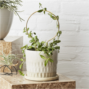 Handmade Brass Plant Stake makes the perfect gift for a plant lover. Designed in Australia