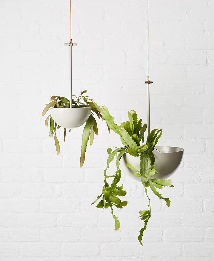 Architecturally shaped Metal hanging Planter in powder coated steel with a round shape suitable for cascading plants.  Made in Melbourne