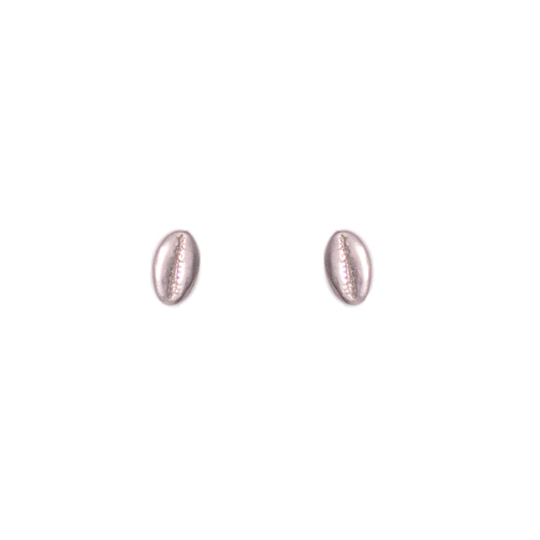 Cowry Shell Stud Earrings