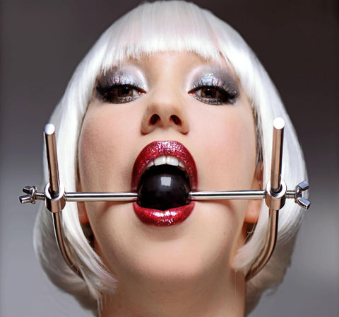 Adjustable Stainless Steel Ball Gag Head Harness - Erotic Superstore