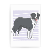 Border collie dog print poster wall art decor