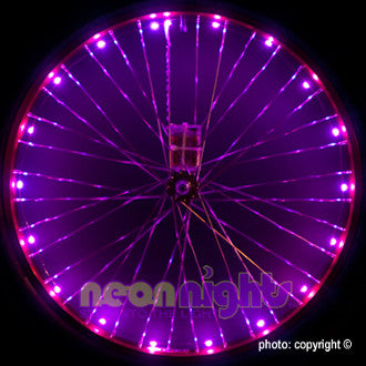Wheel Lights Purple - Newport Cruisers